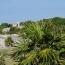 Meksyk - wyprawa marzeń, cz. 9 Tulum i Gran Cenote - wczasy, urlopy, wakacje